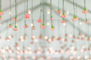 Katelyn_David_Park_City_Utah_Pungent_Pink_Carnation_Ceiling.jpg