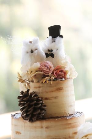 Tina_Dan_Snowbird_Resort_Furry_Lovable_Cake_Topper.jpg