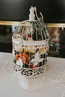 Tea_Party_Baby_Shower_Provo_Utah_Flowers_in_Birdcage.jpg