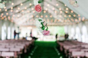 Katelyn_David_Park_City_Utah_Oh_the_Carnations!.jpg
