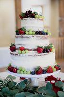 Liz_Jordan_Tracy_Aviary_Salt_Lake_City_Utah_Fresh_Fruit_Decorated_Naked_Cake.jpg