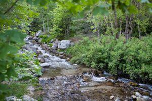 Lenora_John_Sundance_Resort_Sundance_Utah_Cooling_Mountain_Stream.jpg