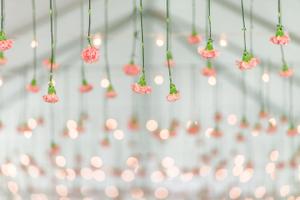Katelyn_David_Pungent_Pink_Carnation_Ceiling.jpg