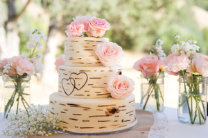 Kristin_Haven_Blacksmith_Fork_Canyon_Wood_Look_Wedding_Cake.jpg