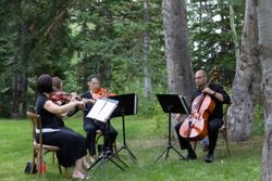 Evelyn_Kevin_Park_City_Utah_String_Quartet.jpg
