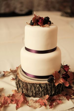 Felicia_Jared_Park_City_Mountain_Resort_Park_City_Utah_Wedding_Cake_On_Wooden_Charger.jpg