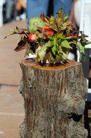 Felicia_Jared_Park_City_Mountain_Resort_Park_City_Utah_Autumn_Flower_Decor.jpg