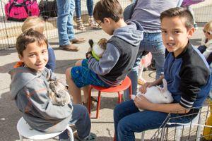 Zermatt_Spring_Extravaganza_2018_Zermatt_Utah_Resort_Midway_Utah_Children_Rabbits.jpg