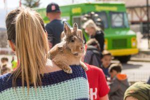 Zermatt_Spring_Extravaganza_2018_Zermatt_Utah_Resort_Midway_Utah_Contented_Rabbit.jpg