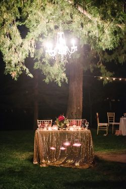 Brianne_Braden_Monument_Park_Stake_Center_Salt_Lake_City_Utah_Chandelier_Head_Table_Gold_Sparkle_Tablecloth.jpg