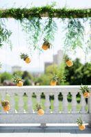 Tessa_Taani_Utah_State_Capitol_Salt_Lake_City_Utah_Detail_Pineapple_Adorned_Backdrop.jpg