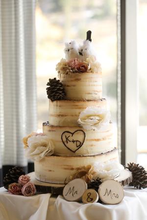 Tina_Dan_Snowbird_Resort_Cake_Mr_Mrs.jpg