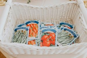Tea_Party_Baby_Shower_Provo_Utah_Vegetable_Seeds.jpg