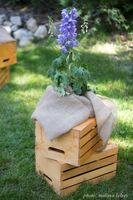 Lenora_John_Sundance_Resort_Sundance_Utah_Crate_Blue_Flower_Decor.jpg