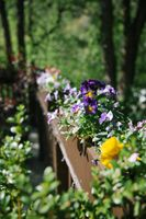Claire_Scott_Millcreek_Inn_Salt_Lake_City_Utah_Flower_Detail_Bridge.jpg
